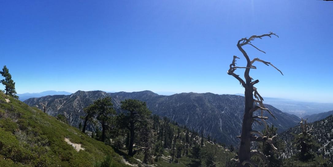 Mt.BaldyPanoramaLookingSouth