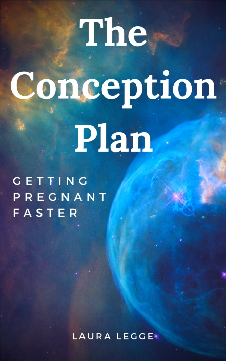 The Conception Plan 2